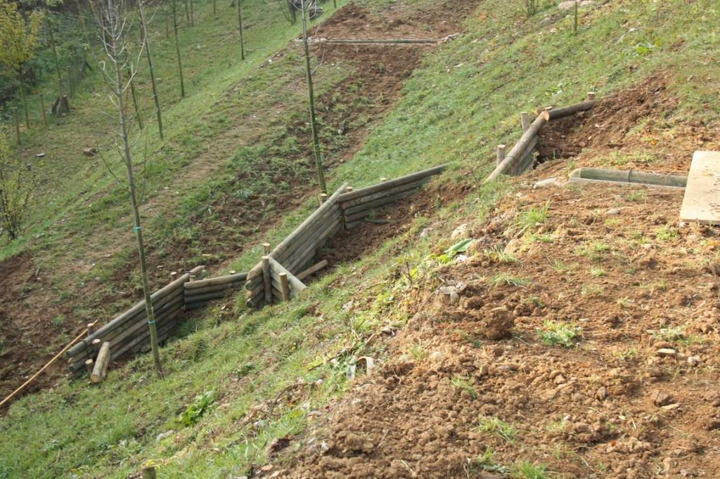 Intervento di ingegneria naturalistica per il contenimento for Consolidare un terreno